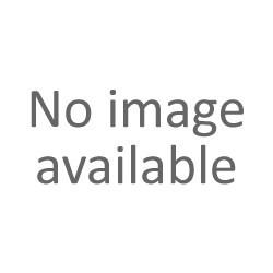 Zwinnik Filigera (Prionobrama filigera)