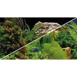 Tło akwariowe dwustronne 30 cm/25 m rośliny/rośliny