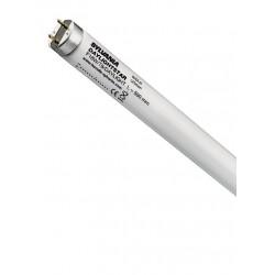 Świetlówka Daylightstar T8 15W 437mm