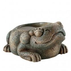 Miska Żaba Exo Terra Aztec Frog