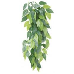 Sztuczna roślina wisząca z jedwabiu, Figowiec ø20x50cm