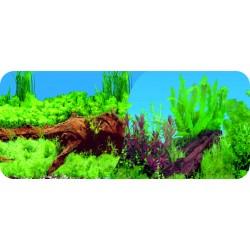 Dwustronne tło do akwarium Tapeta